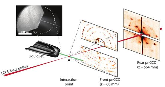 Serial femtosecond crystallography